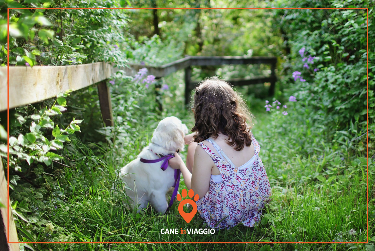 cucciolo di cane insieme a una bambina