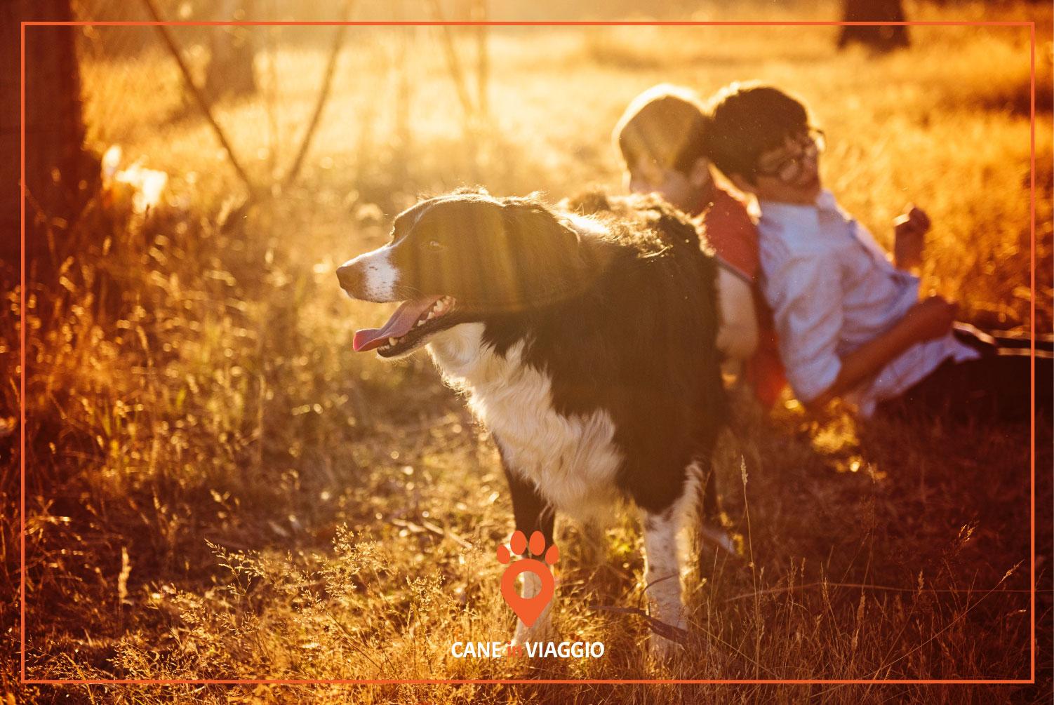 bambini giocano con un cane in un agriturismo