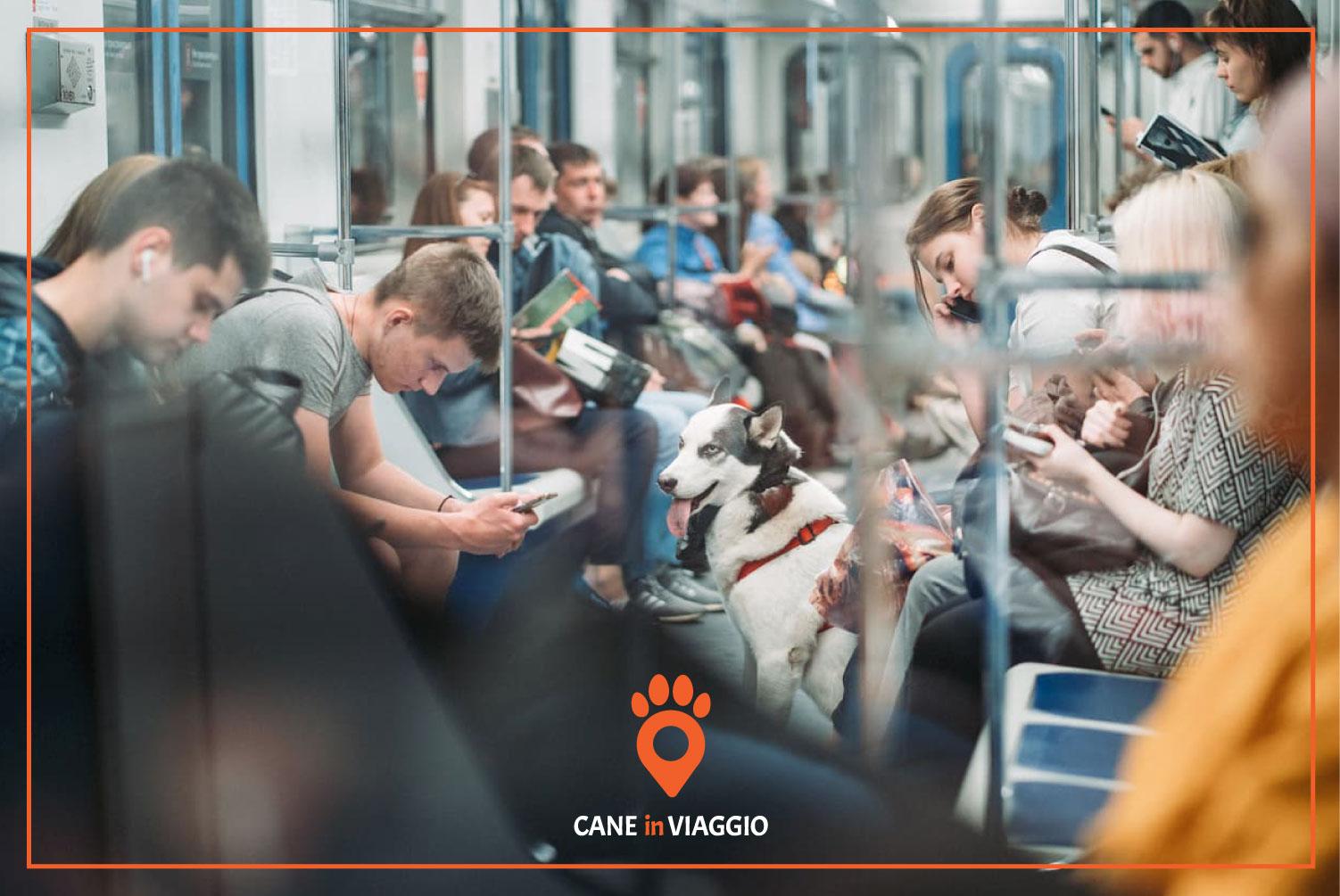 cane attende seduto nella metro a Roma
