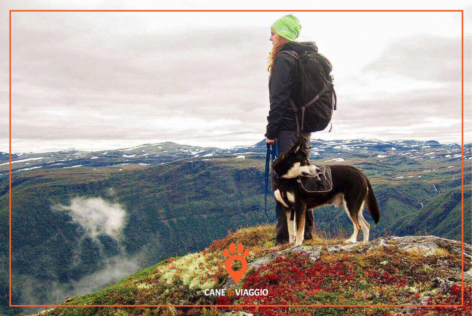 padrona e il suo cane in cima ad una montagna durante il trekking