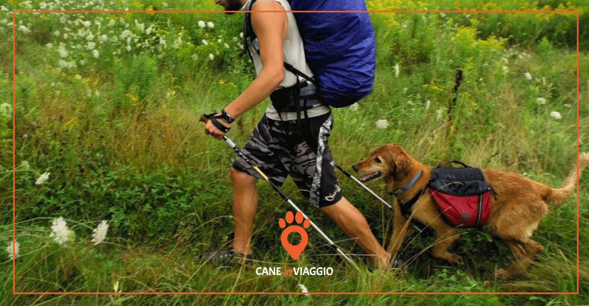 cane e padrone camminano durante il trekking in Molise