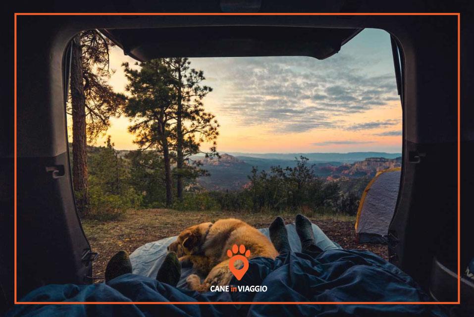 cane e padroni si godono il paesaggio dal loro camper