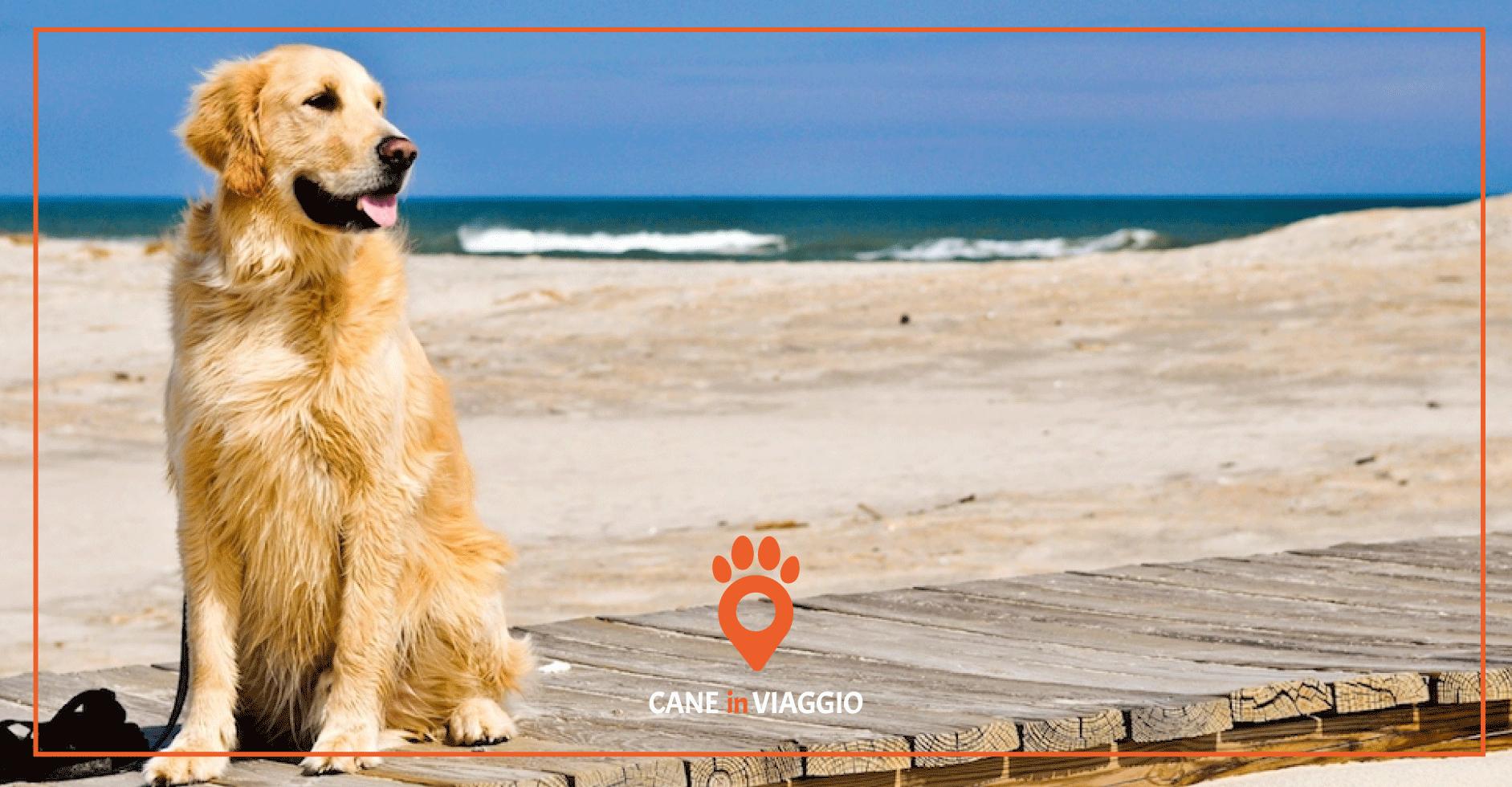 Spiagge per cani Veneto