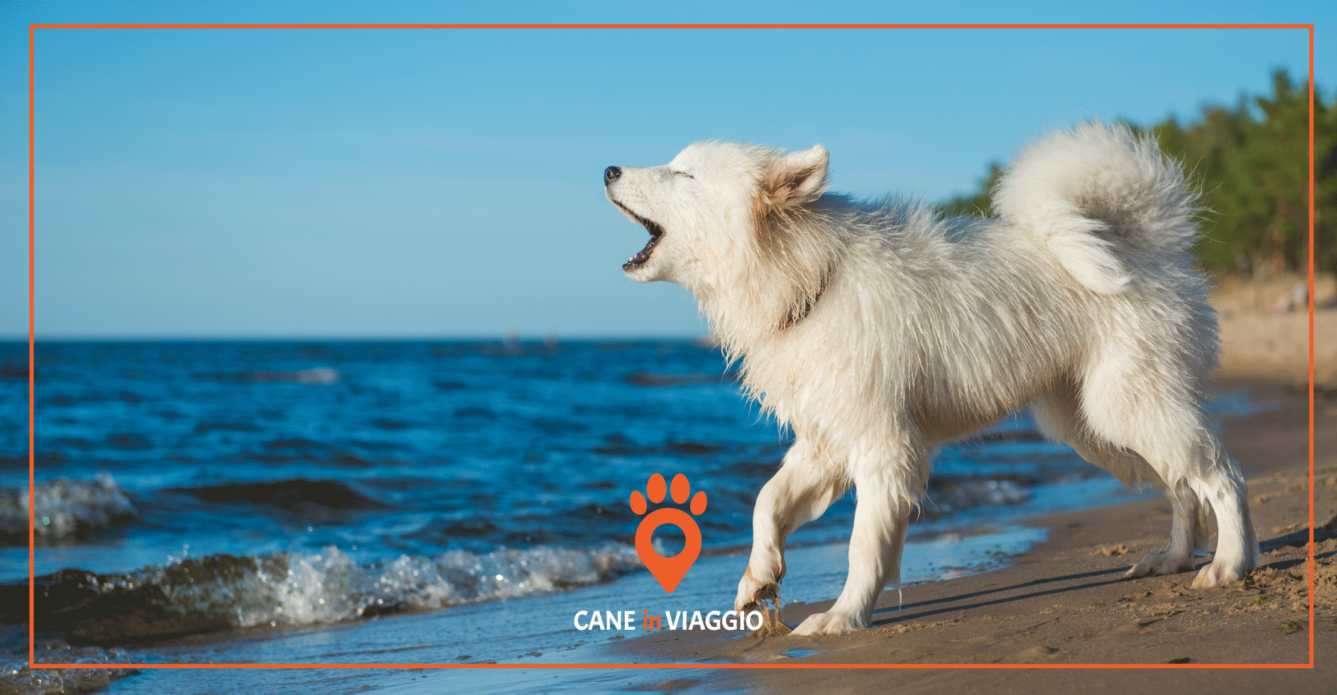 Spiagge per cani Sicilia