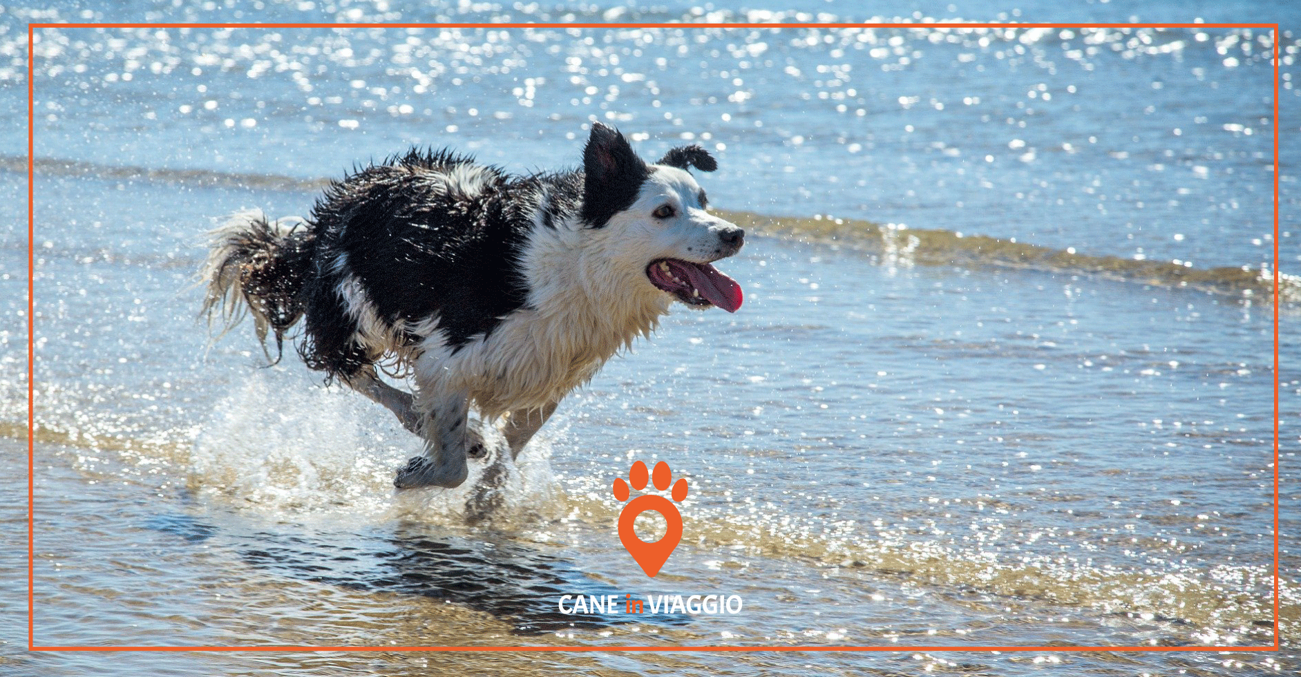 Spiagge per cani Emilia Romagna
