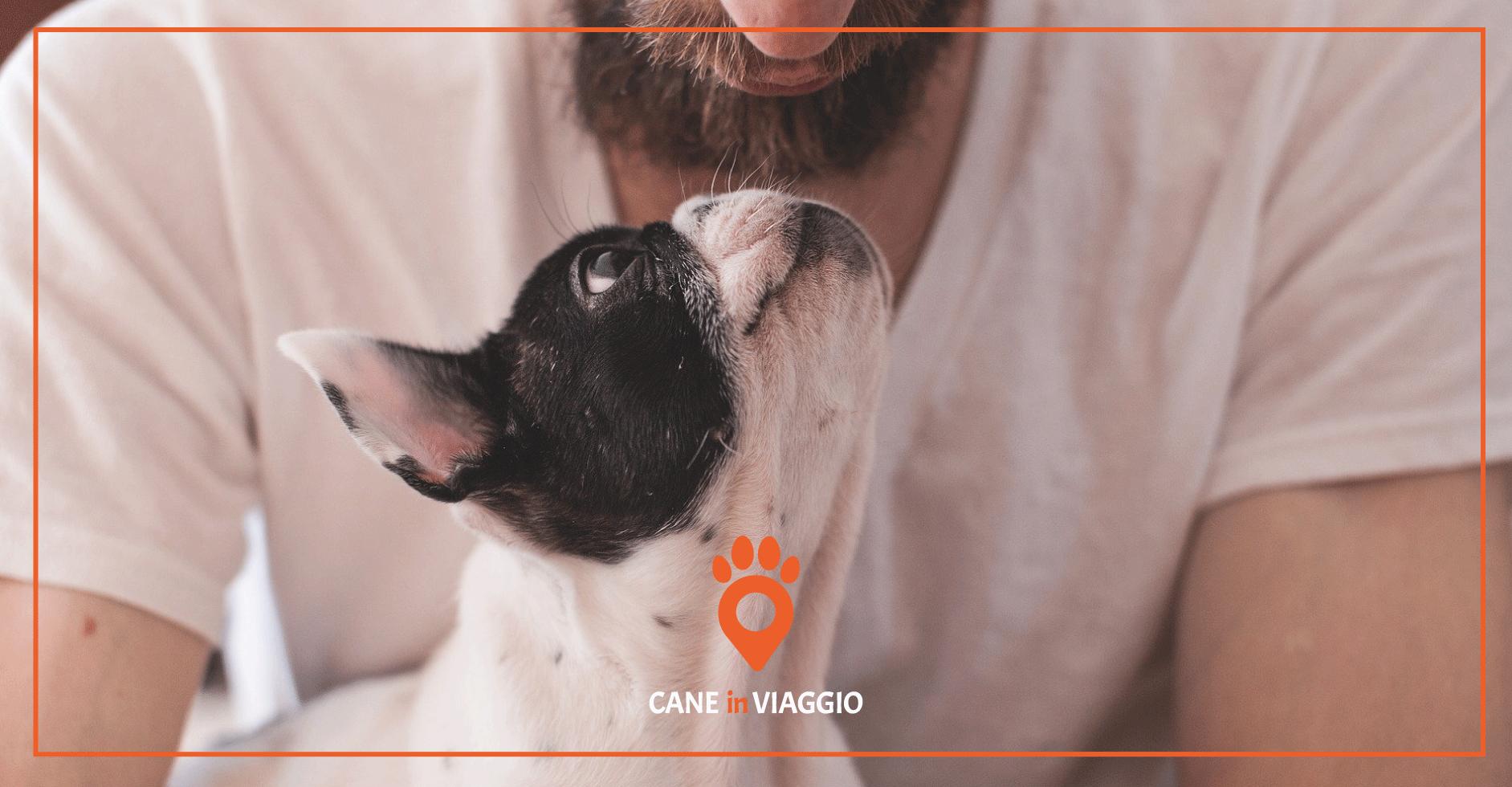 assicurazione_per_cani