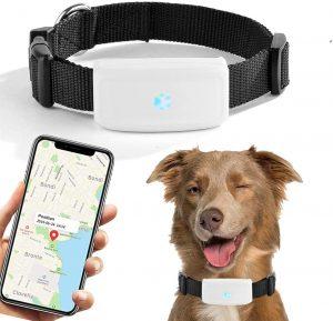 Tractive Localizzatore GPS per Pets Cani