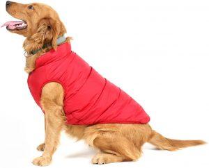 Abbigliamento per Cani, Maglione, Cappotti Invernali Caldi