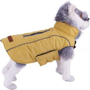 Cappotti e Giubbotti per Cani