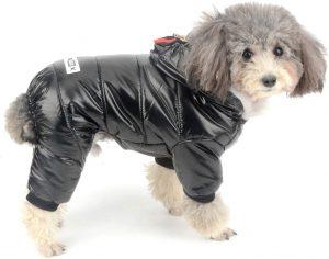 tuta da neve impermeabile per cani