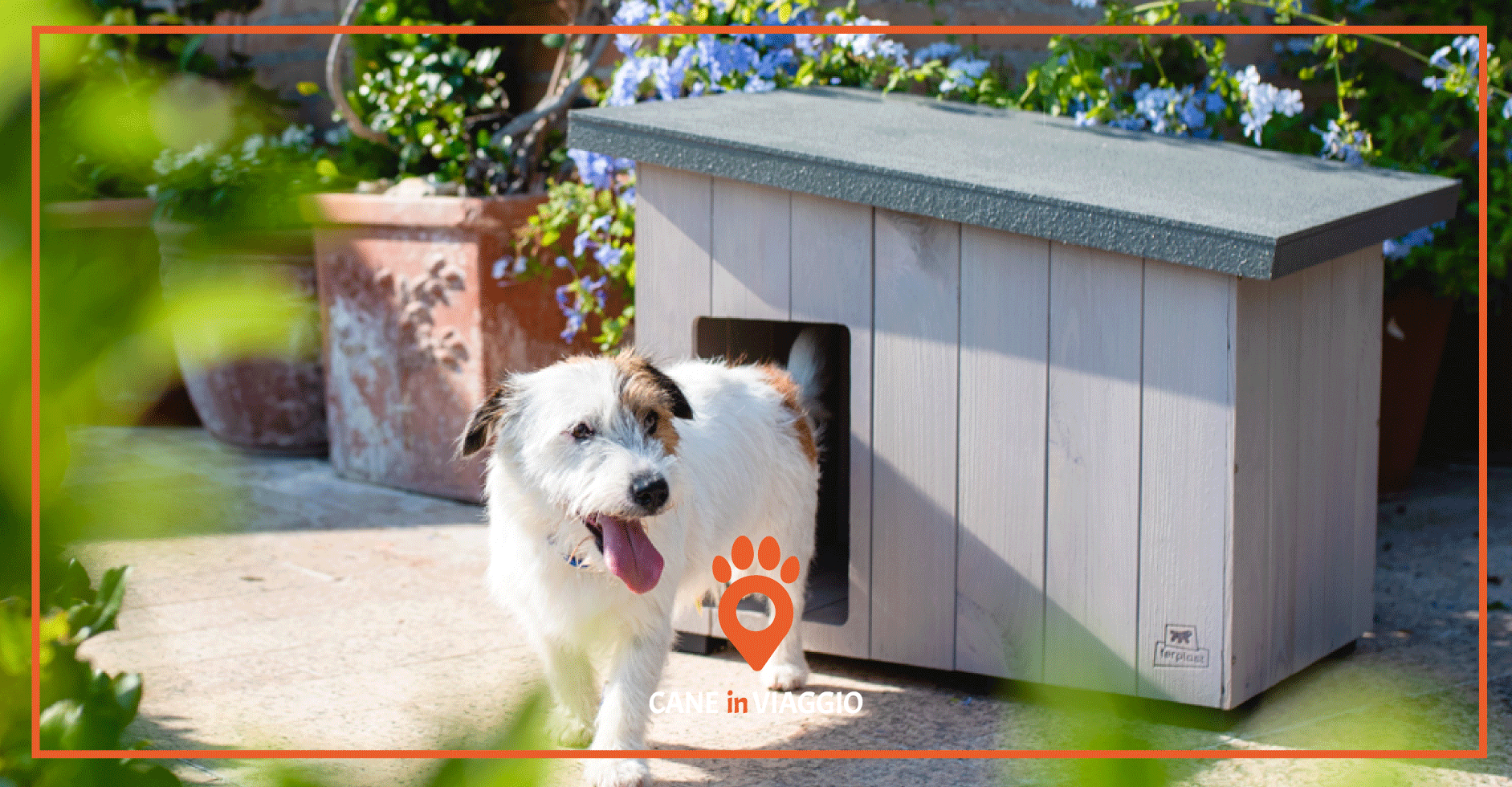 cucce per cani da esterno